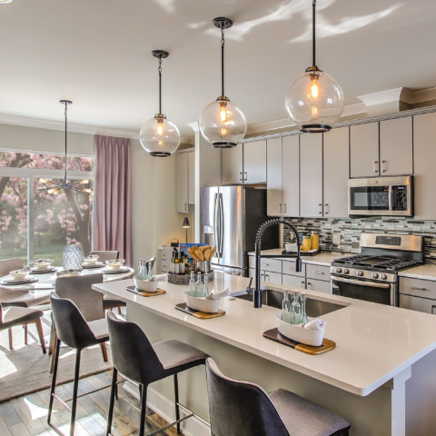 Contemporary Cabinetry, Kitchen Cabinetry